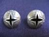 earth star studs